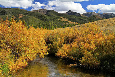 Photograph - Headwater River Of No Return  by Ed  Riche