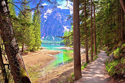Photograph - Idyllic Alpine Walkway By Pragster Wildsee Lake by Brch Photography