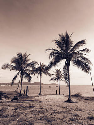 Photograph - Idyllic Beach by Helissa Grundemann