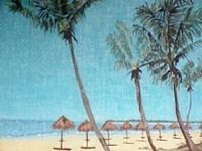 Wall Art - Painting - Idyllic Day At Marco Island by Elaine Marie