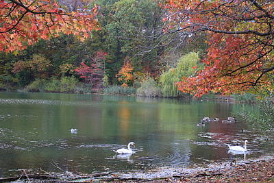 Photograph - An Idyllic Autumn by Dora Sofia Caputo Photographic Design and Fine Art