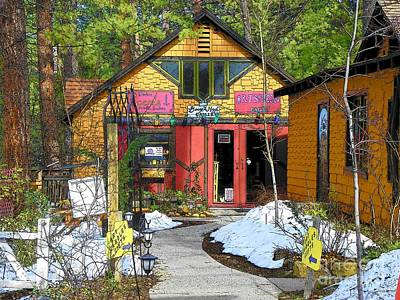 Photograph - Idyllwild Art Shop by Lisa Dunn