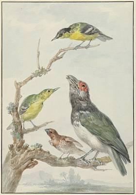 Ier Verschillende Vogels Art Print by MotionAge Designs