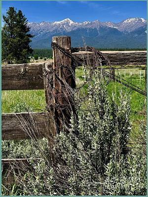 Photograph - If Fences Could Speak by Jennifer Lake