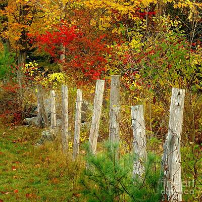 Photograph - If I Could Paint No 1 - New England Fall Fence by Jon Holiday