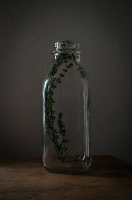 Photograph - If I Could Save Thyme In A Bottle by Rae Ann  M Garrett