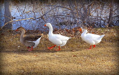 Sculpture - Geese In A Line by Donna Spadola