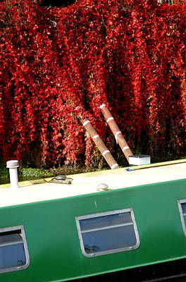 If Only It All Looked Like This Art Print by Jez C Self