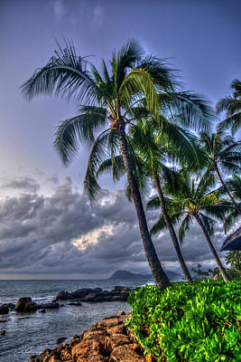 Photograph - If You Could See Me Now Majestic Palms Hawaii Collection Art by Reid Callaway