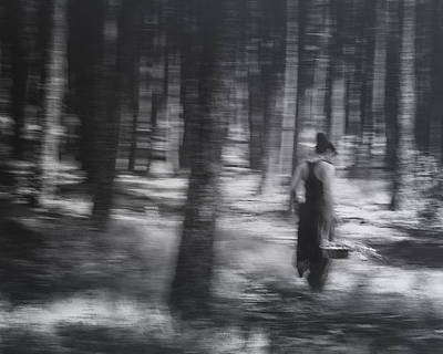 Photograph - If You Go Into The Woods Today by Theresa Tahara