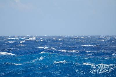 Horizontal Photograph - If You Love Blue by MingTa Li