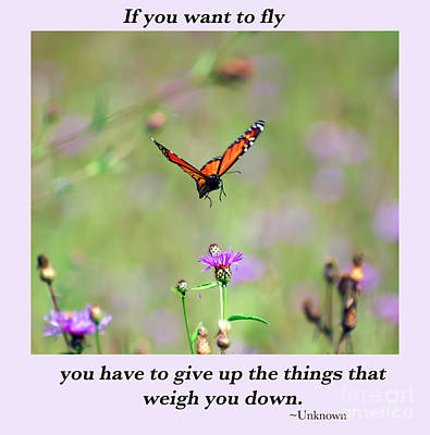 Food And Flowers Still Life - If You Want To Fly... by Kerri Farley