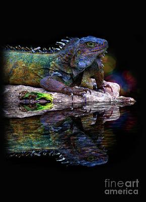 Photograph - Iguana In Montanita, Ecuador IIi by Al Bourassa