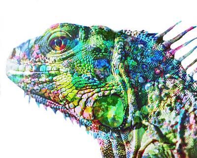 Painting - Iguana by Mark Taylor