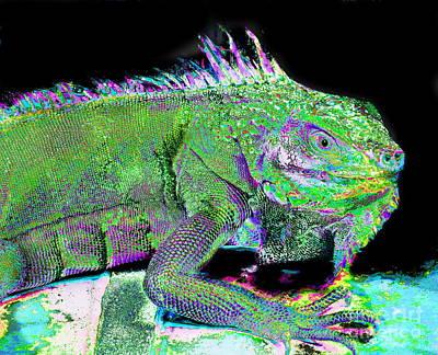 Photograph - Iguana Smile by Expressionistart studio Priscilla Batzell