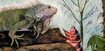 Iguana Painting - Iguana by Suzanne Leslie