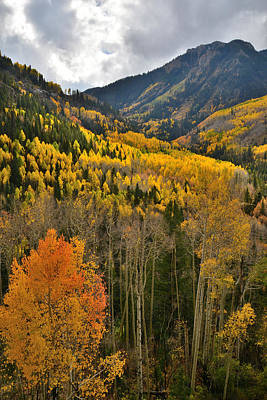 Photograph - Ilium Valley by Ray Mathis
