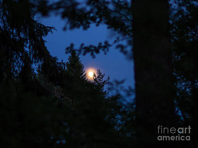 Photograph - I'll Meet You At Midnight by Ismo Raisanen