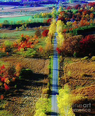 Photograph -  Illinois Country Road Tree Top Sunset Fall  by Tom Jelen