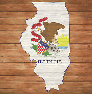 Mixed Media - Illinois Rustic Map On Wood by Dan Sproul