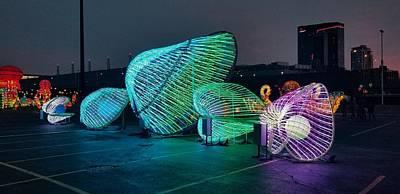 Photograph - Illuminated Clam Lights by Britten Adams