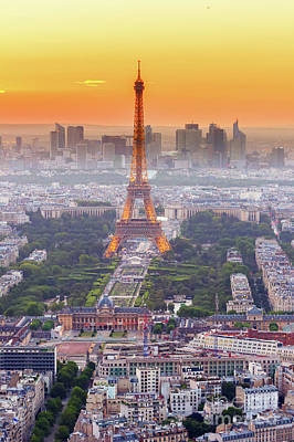 Black And White Flower Photography - Illuminated Eiffel Tower  by Anastasy Yarmolovich