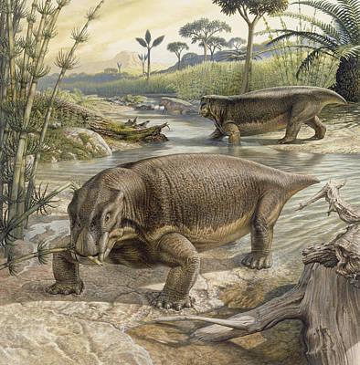 Illustration Of Lystrosaurus Art Print by John Sibbick