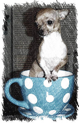 Teacup Chihuahua Photograph - I'm A Little Teacup by Beth Morris