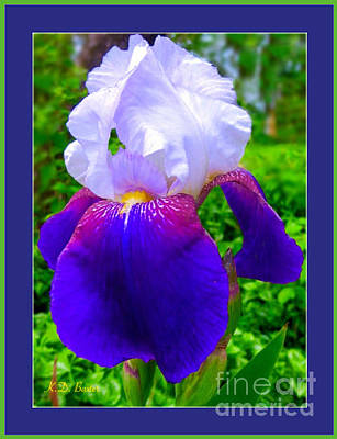 Painting - I'm Dreaming Of Irises by Kimberlee Baxter