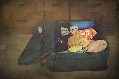 Canines Digital Art - I'm Going With You by Laurie Search