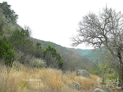 Photograph - Image Included In Queen The Novel - Hill Country Trail Enhanced by Felipe Adan Lerma