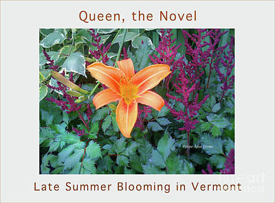 Photograph - Image Included In Queen The Novel - Late Summer Blooming In Vermont 23of74 Enhanced Poster by Felipe Adan Lerma