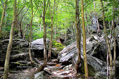 Photograph - Image Included In Queen The Novel - Rocks At Smugglers Notch Enhanced by Felipe Adan Lerma