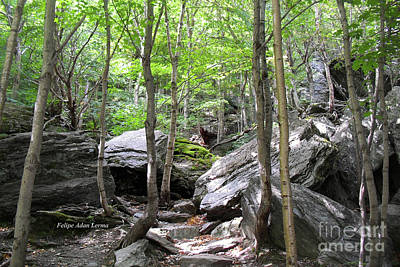 Photograph - Image Included In Queen The Novel - Rocks At Smugglers Notch by Felipe Adan Lerma