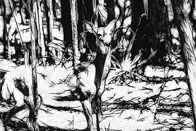 Digital Art - Images In The Forest by Dennis Baswell