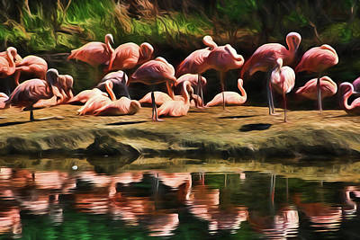 Digital Art - Pink Flamingo Color by Terry Cork