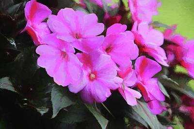 Painting - Impatiens 8485 - Painted by Ericamaxine Price
