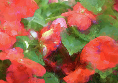 Digital Art - Impatiens Abstract by Aliceann Carlton