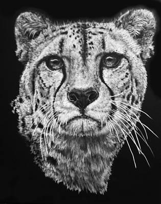 Cheetah Mixed Media - Imperial by Barbara Keith