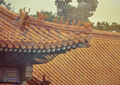 Photograph - Imperial Roofer by JAMART Photography