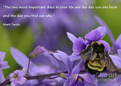 Photograph - Important Days In Your Life by Olga Hamilton