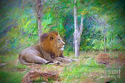 Impressionable Lion Print by Judy Kay
