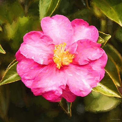 Photograph - Impressionist Floral Pink Camelia by Michelle Wrighton