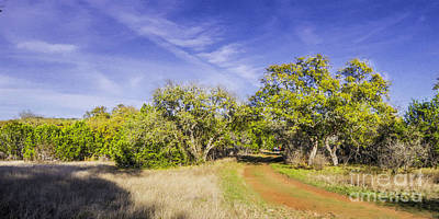Impressionism Photos - Impressionist Painting Panorama of a Texas Hill Country landscape at Pedernales Falls State Park  by Silvio Ligutti