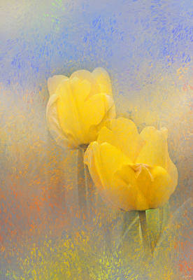 Photograph - Impressionist Tulips by Jai Johnson