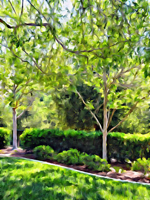 Photograph - Impressions From A Park - One by Glenn McCarthy Art