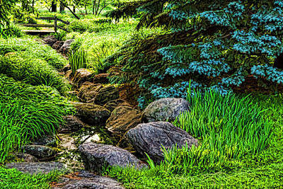 Digital Art - Impressions Of Gardens - A Miniature Creek Through The Fresh Spring Green by Georgia Mizuleva