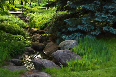 Digital Art - Impressions Of Gardens - A Miniature Spring Creek Through The Fresh Green by Georgia Mizuleva
