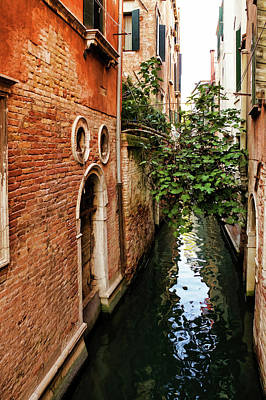 Overhang Digital Art - Impressions Of Venice - Small Canal Hugged By A Fig Tree by Georgia Mizuleva
