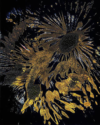 Painting - Imprints Of Nature Series 1751.mp-4.011514inv2fddf by Kris Haas